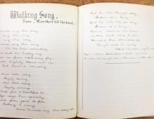 'Walking Song'