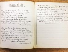 'Little Nell'